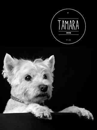 Tamara_1.jpg