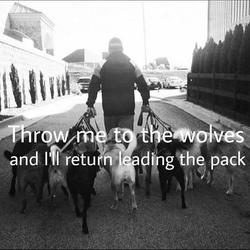 Frank doing a pack walk