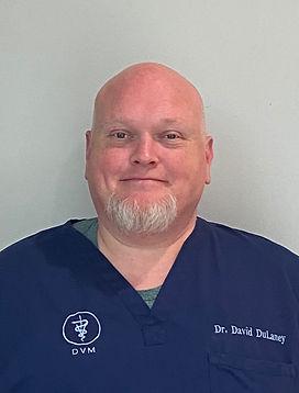 Dr David DuLaney orthopedic veterinary surgeon