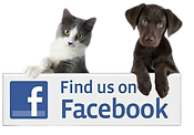 Like Butler Creek Animal Hospital on Facebook