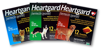 Heartgard Plus 12 Month, online pet pharmacy, chewy, amazon, fosters and smith, FDA