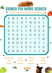 Guinea Pig Word Search.png