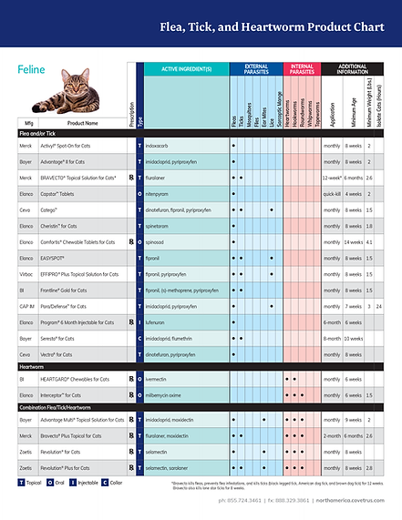 Cat Prevention Product Comparisons.png