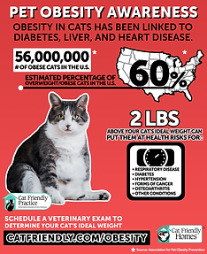 Pet-Obesity-Infographic-2019.png