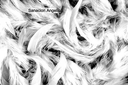 Sanación Angelical - 1 a 1