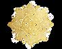 Mandala%20png_edited.png