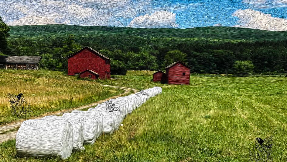 2 Red Barns.jpg