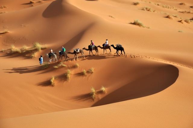 désert-Tunisie.jpg