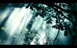Capture d'écran 2012-11-07 à 08.46.37.png