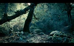 Capture d'écran 2012-11-07 à 08.46.55.png