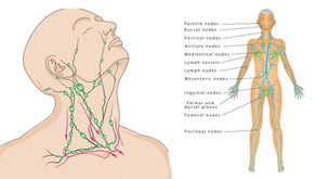 Lymphatic drainage; it doesn't sound sexy but it is!