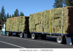 truck-transporting-bails-hay-260nw-14828