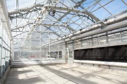 WVU Greenhouse 10-12-12-163