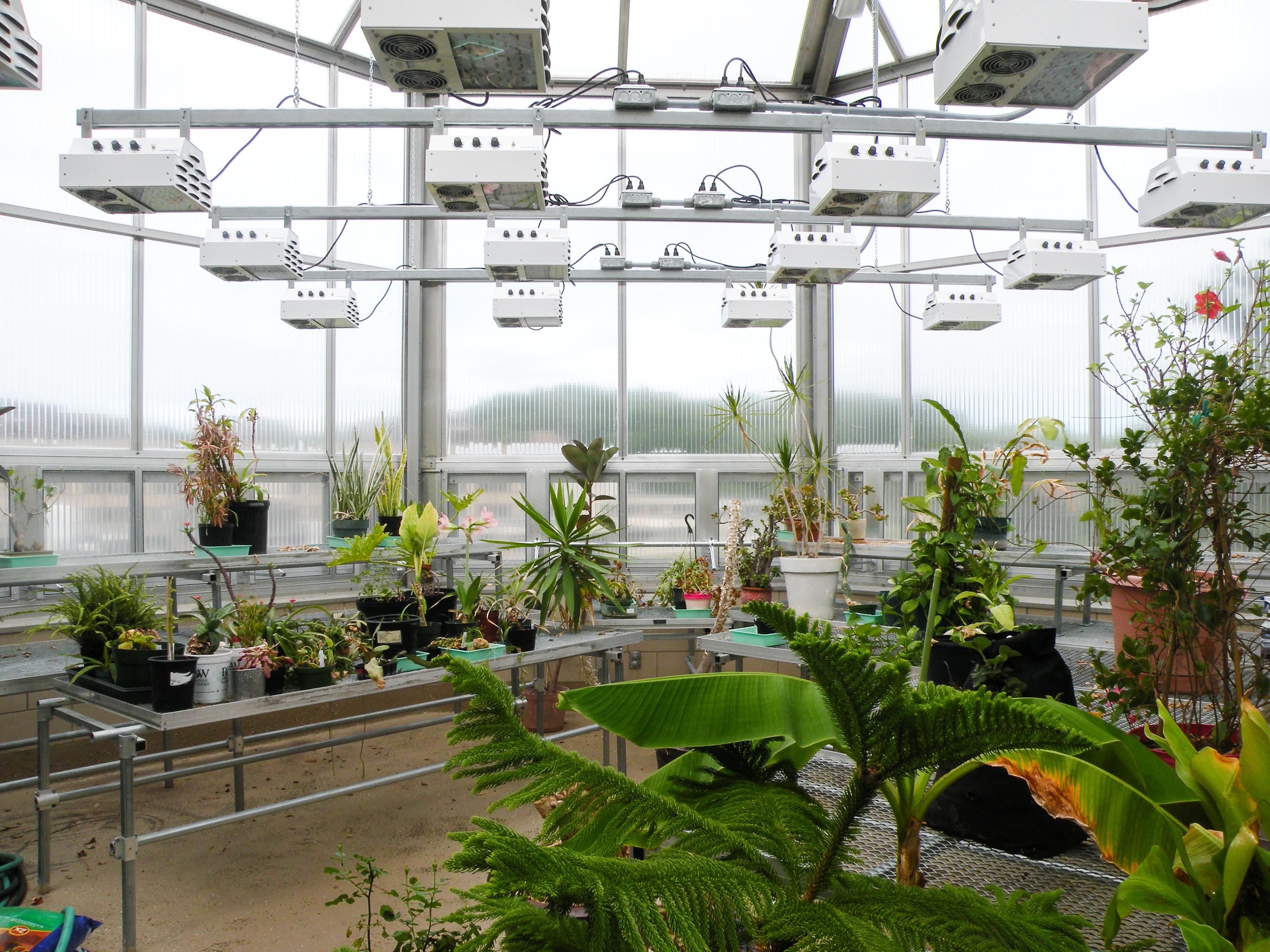FSU Greenhouse-2