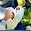 Thumbnail: Мотокоса Stihl FS 38