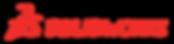 solidworks-logo.png