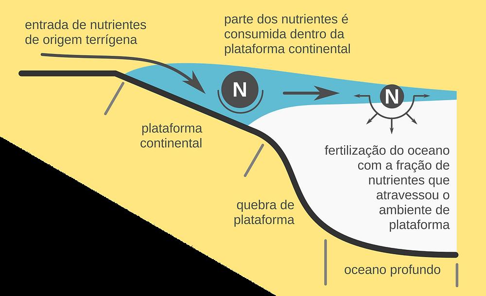Esquema mostrando a excursão de uma pluma costeira até o oceano profundo. Nota-se que apenas parte do volume da pluma atinge águas oceânicas (em cor azul), o que age como limitador ao aporte de nutrientes (representados por N). Outro fator importante é que os nutrientes são consumidos na plataforma continental, ficando disponível uma fração reduzida para fertilizar as águas do oceano mais profundo