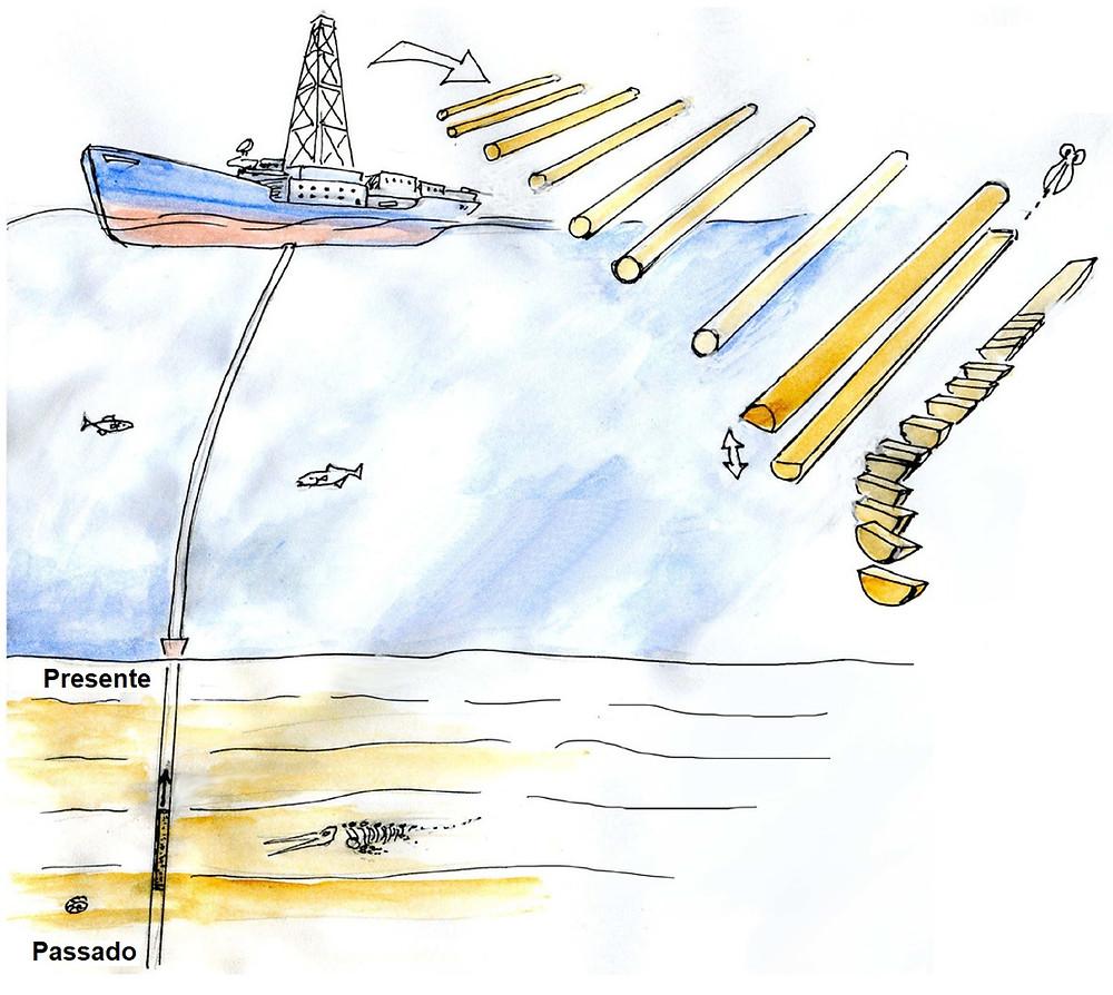 Figura esquemática mostrando as etapas de amostragem de um testemunho marinho. A figura mostra uma seção meridional do oceano com o sedimento marinho estratificado na parte inferior, seguindo pela coluna d'água logo acima e um navio operando na superfície. Embaixo do navio se encontra o cabo do amostrador que desce e por fim está conectado ao amostrador que se encontra inserido no sedimento do fundo. Ao lado do navio são mostrados desenhos do testemunho seccionado após a amostragem.