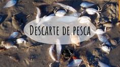 Descarte de pesca