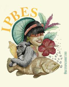 Como tomar decisões sobre biodiversidade? Minha experiência na IPBES