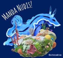 Nudibrânquios, os musos do mar