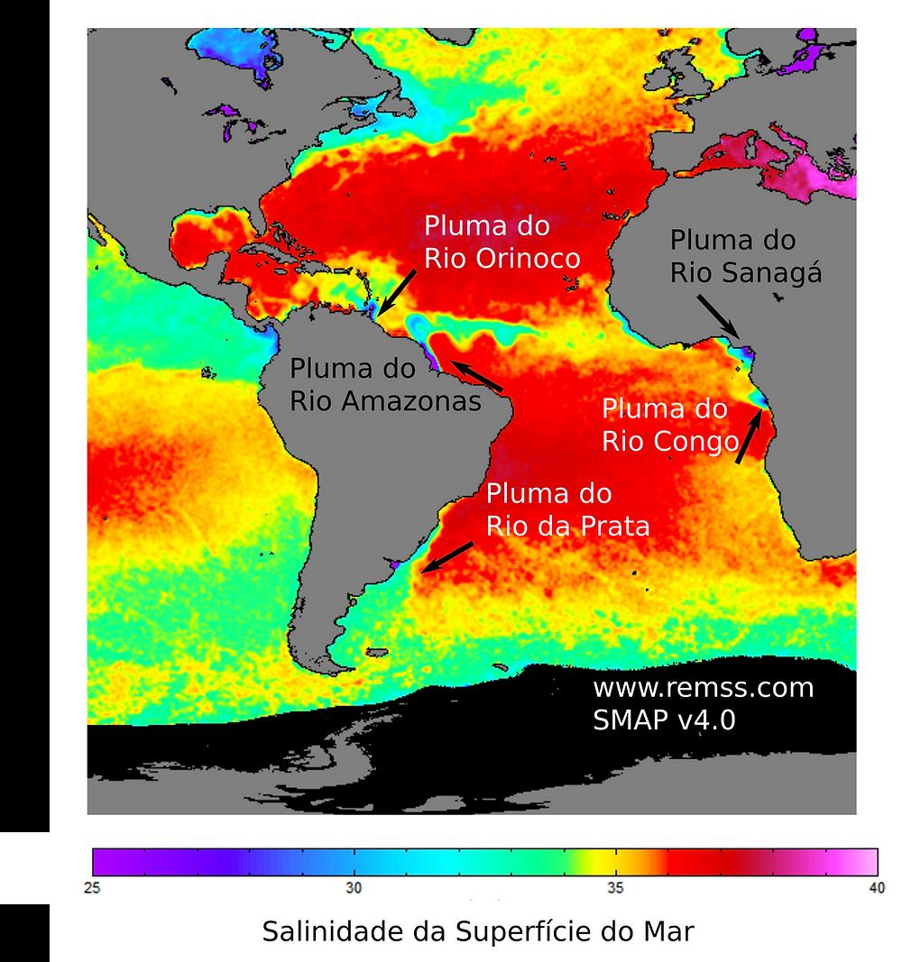Mapa de salinidade da superfície do mar para o Atlântico Sul, mostrando os rios com as maiores descargas nessa bacia oceânica. Fica evidente a diferença de escala entre a Pluma do Rio Amazonas, cuja anomalia de salinidade chega a ocupar uma grande extensão do Oceano Equatorial, e a Pluma do Rio da Prata, que fica aprisionada no ambiente de plataforma.  (Fonte: www.remss.com - Soil Moisture Active Passive Mission - SMAP, domínio público).