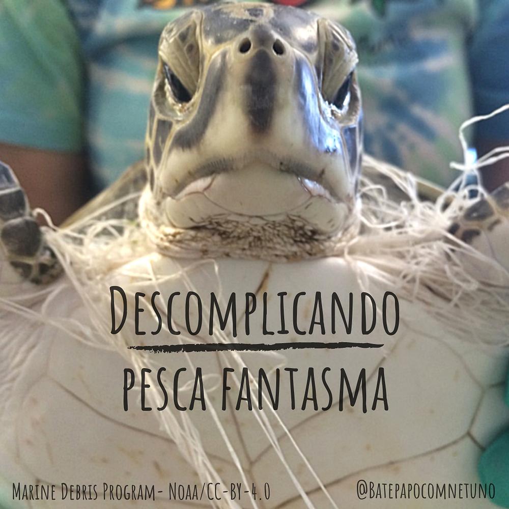 Imagem da chamada do post Descomplicando Pesca Fantasma - na foto o problema é ilustrado representando uma tartaruga morta enrrolada em uma rede de pesca abandonada no oceano