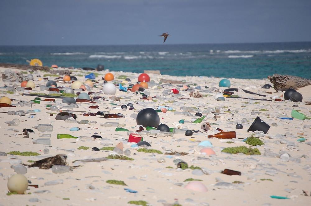 A imagem mostra a faixa de areia de uma praia, nela podemos observar vários resíduos plásticos que foram descartados de forma irregular.