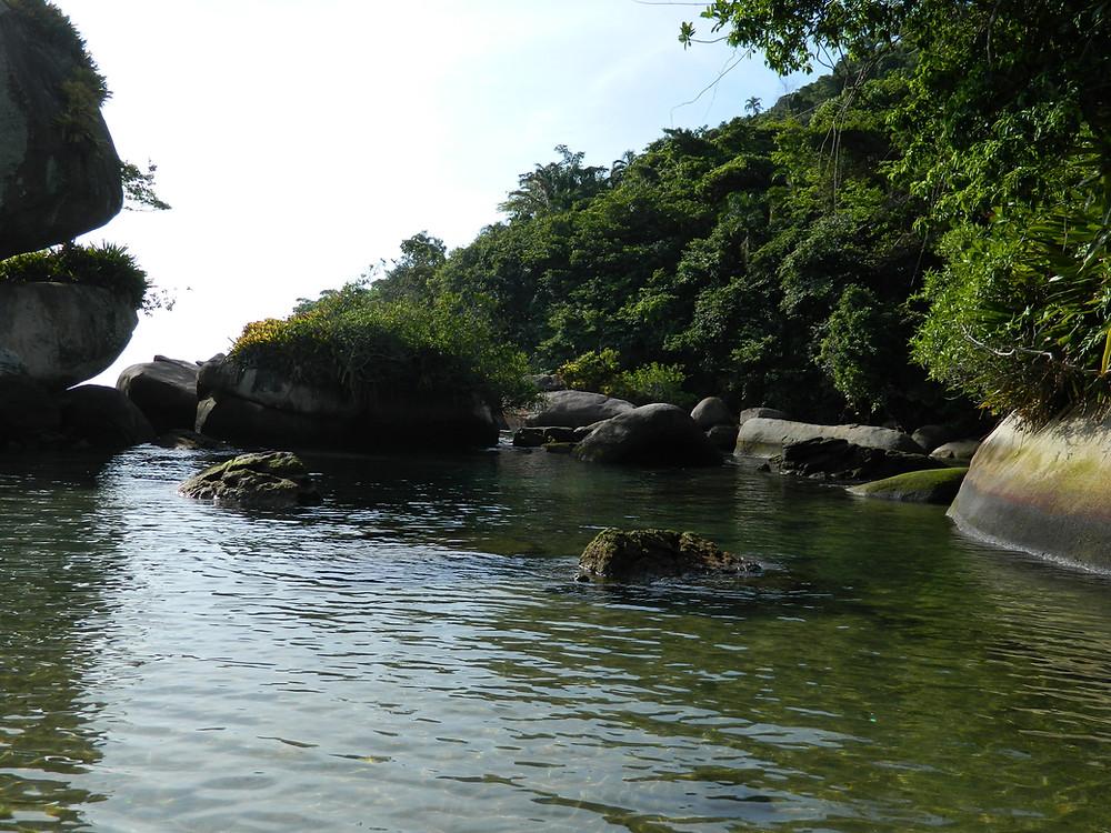 A imagem mostra um rio  de águas escuras, com grandes pedras e vegetação exuberante nas suas margens.