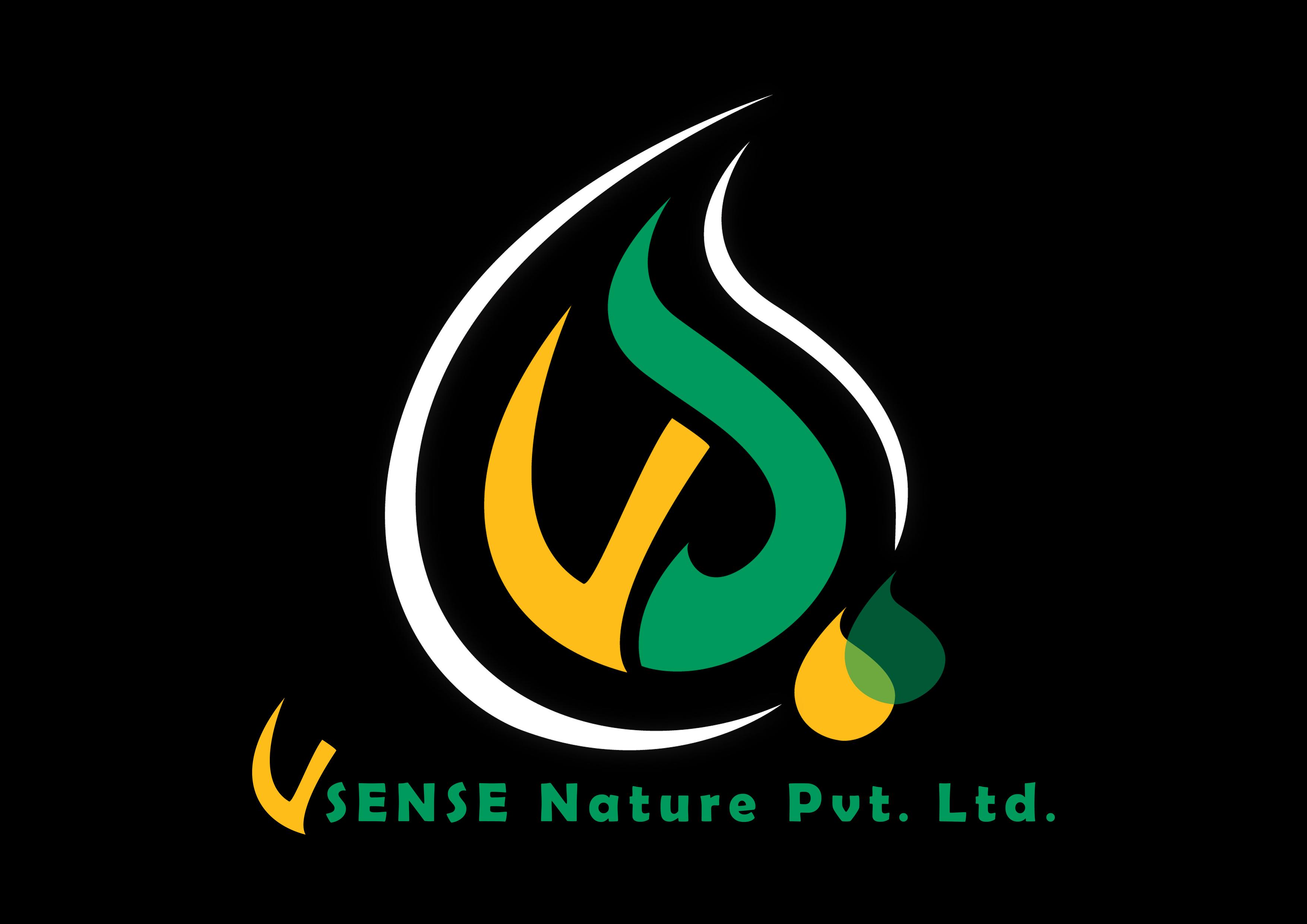 V Sense Logo