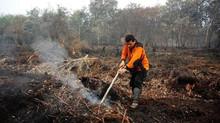 Mengapa Kebakaran Lahan Gambut Sulit Dipadamkan