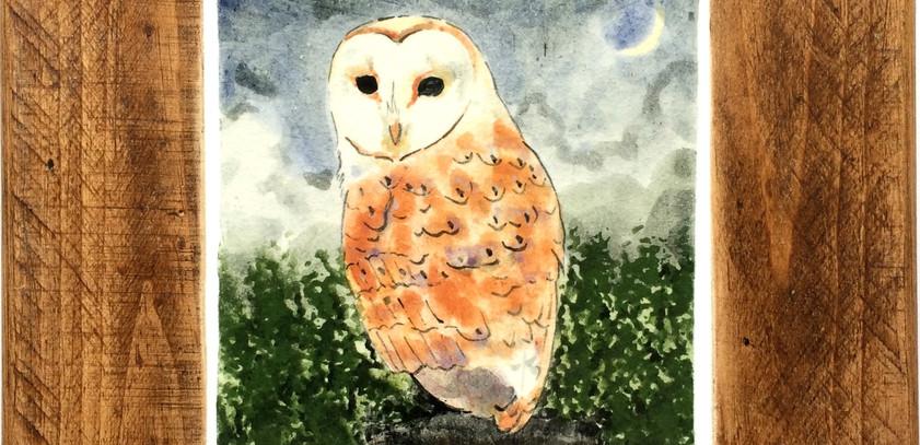 Barn Owl tile in polished frame 10cm