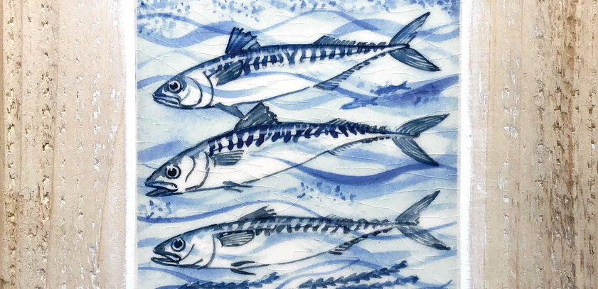 Blue Mackerel tile 10cm