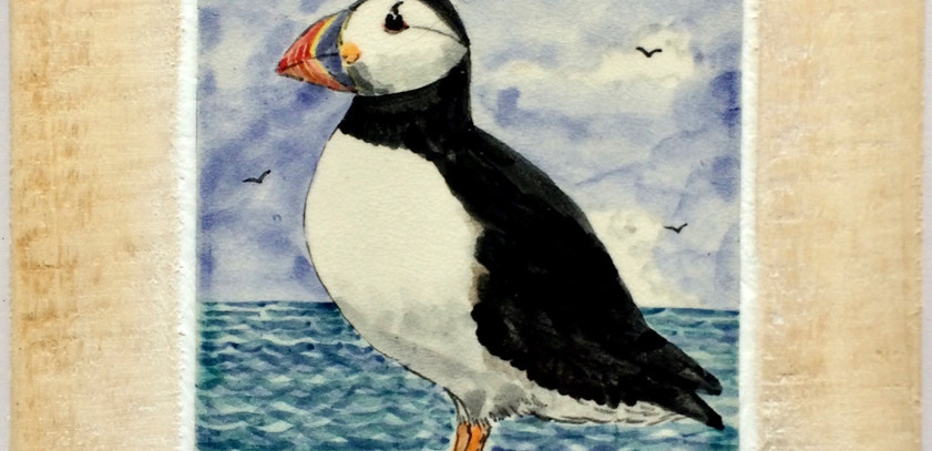 Puffin tile in natural frame