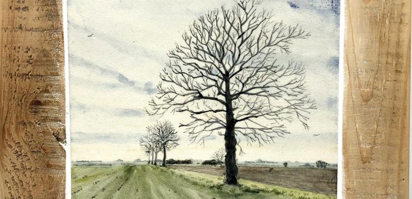 A field near Winfarthing