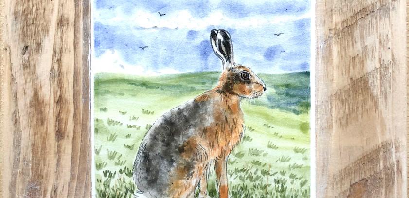 Sitting Hare tile 10cm