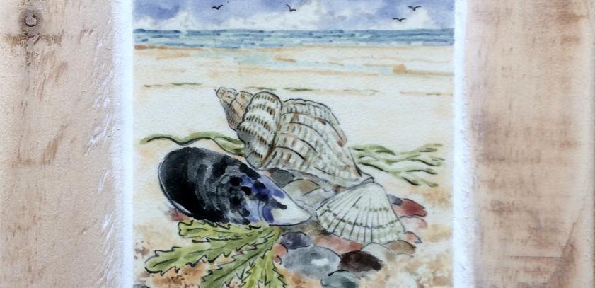 Shells on the beach tile 10cm