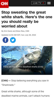 Stop sweating the great white shark. Here's the one you should really be worried about