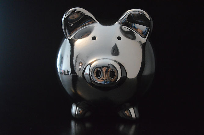 my-moneypig-6V9ZZX6.jpg