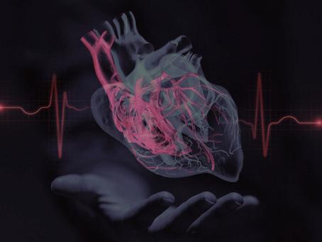 Heart B-it