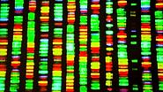 GenomicModelHome.png