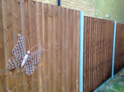 Treated Timber Fence.