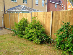 Green feather edge panels in Dartford.