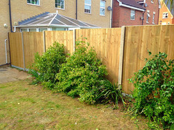 Timber Fencing in Sidcup.