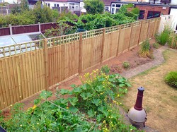 Tall fence for a boundary.
