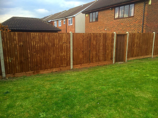Feather edge fencing and gate.