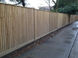 Feather edge wooden Fencing.