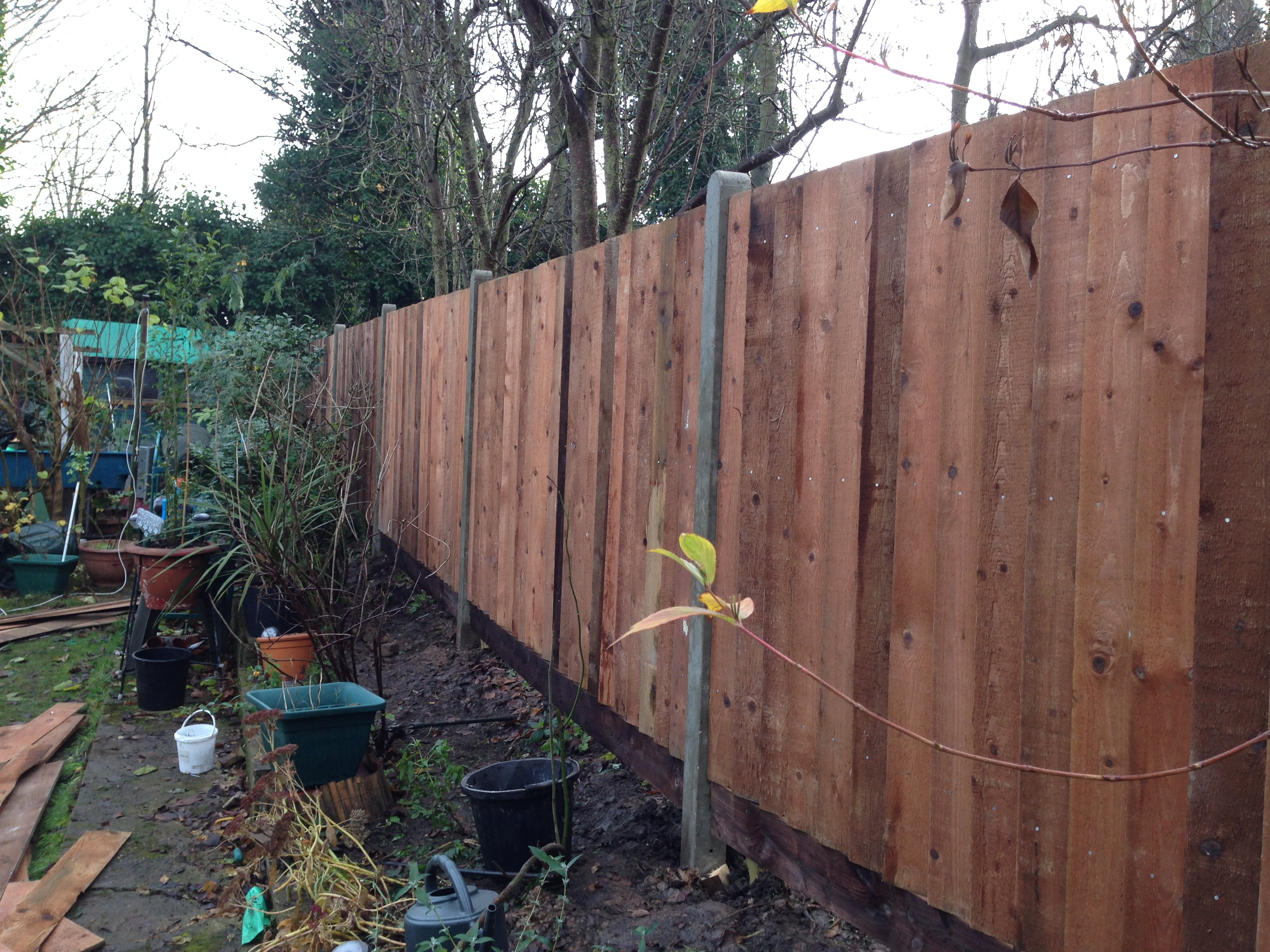 concrete post fencing bexley