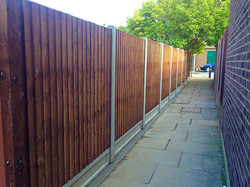 Feather edge fence design in Sidcup.
