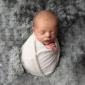 newborn photography by posie photograph